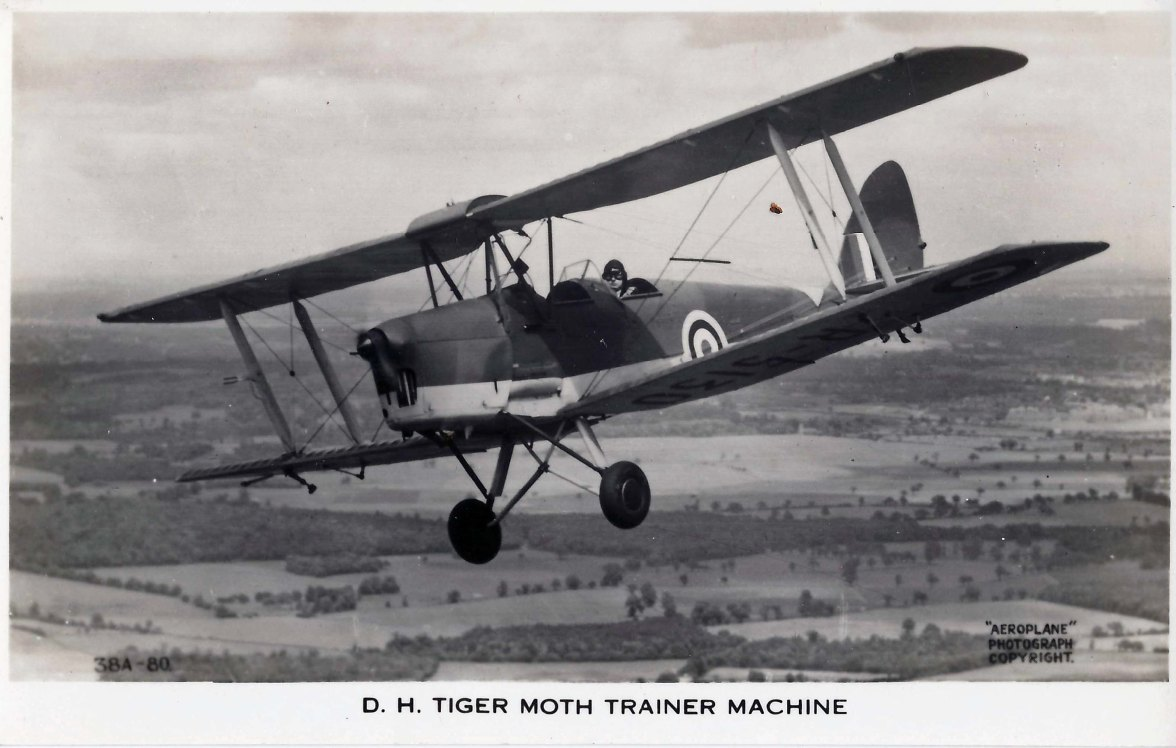 Tiger Moth Trainer