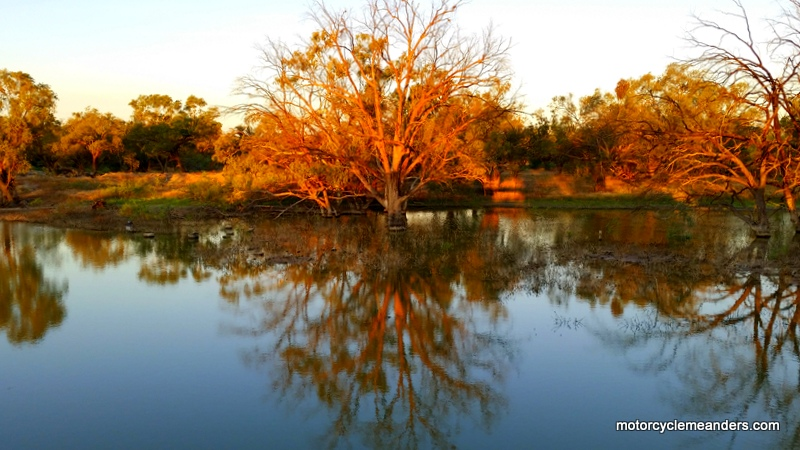 View from my tent at Wilcannia